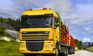 road-trucks-free-timber-xf-truck-daf-picture-553319